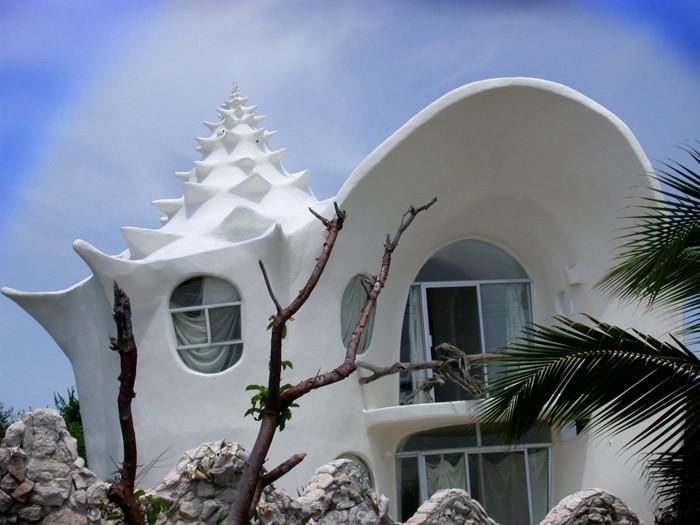 Conch-Shell, Isla Mujeres. México.