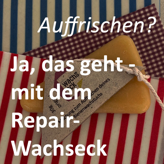 Repair Wachseck