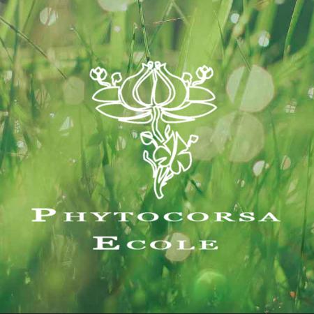 """Résultat de recherche d'images pour """"ECOLE PHYTOCORSA logo ECOLE PHYTOCORSA logo ECOLE PHYTOCORSA logo"""""""