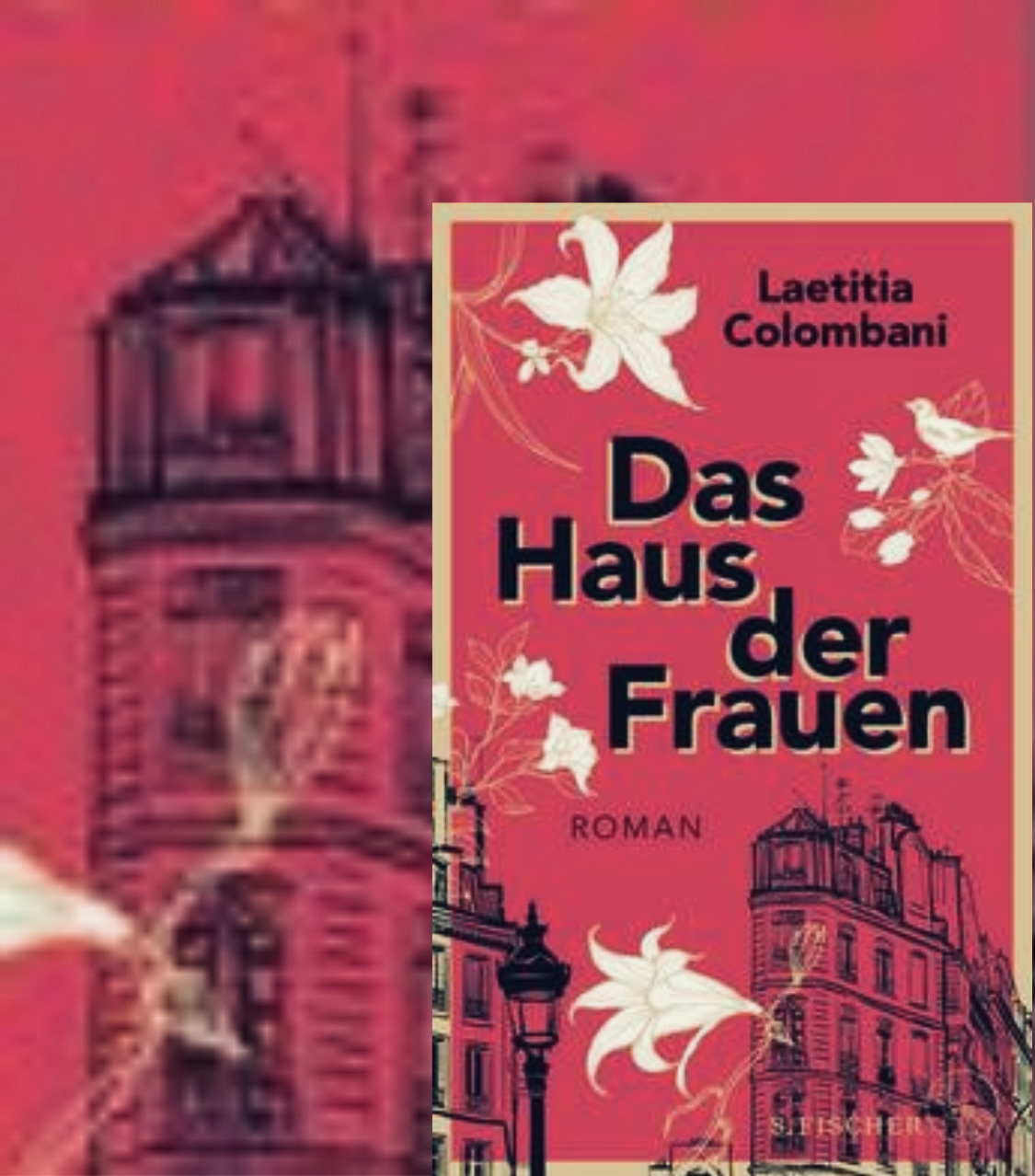 Laetitia Colombani: Das Haus der Frauen