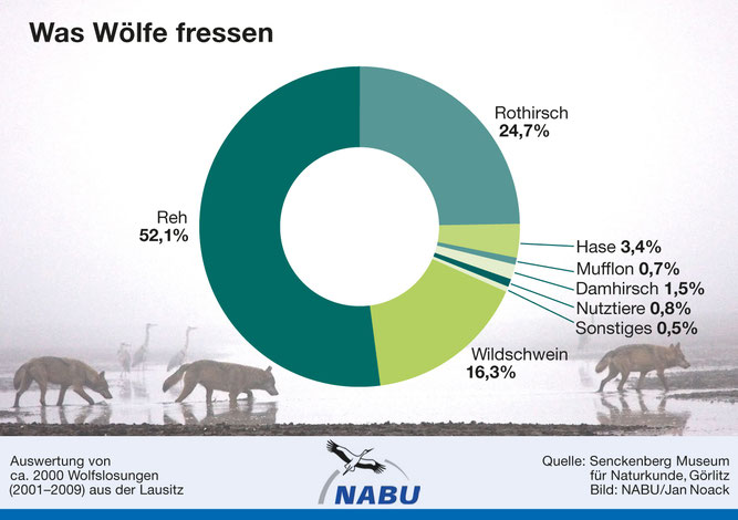 Grafik: NABU/J. Noack