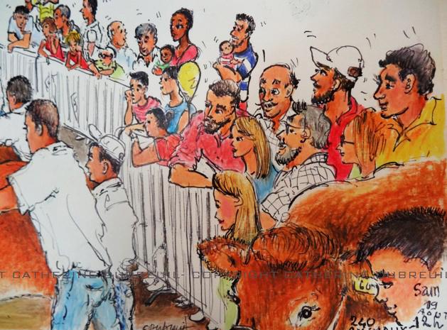 le public dessin de catherine dubreuil brive la gaillarde