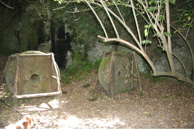 le mole del vecchio mulino