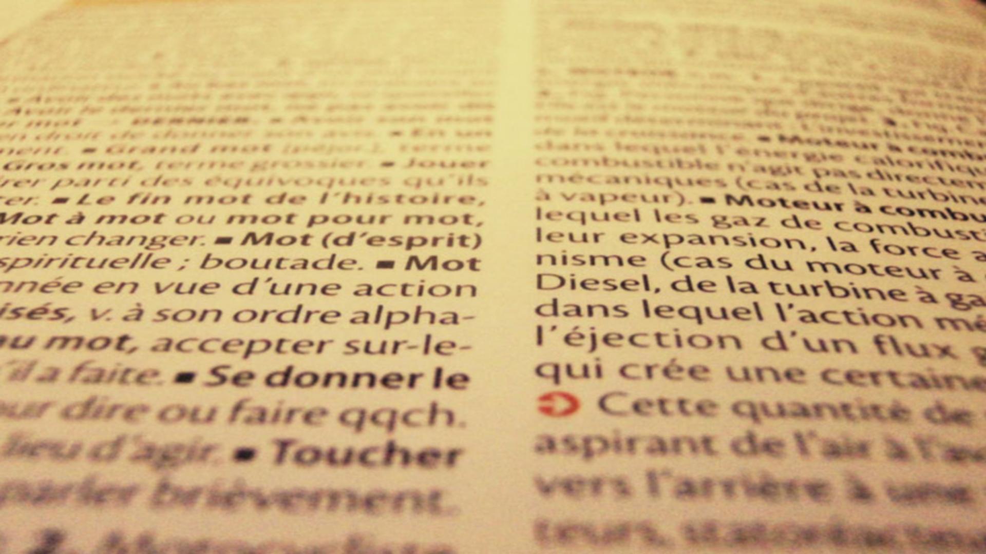 Le dictionnaire des mots oubliés #3