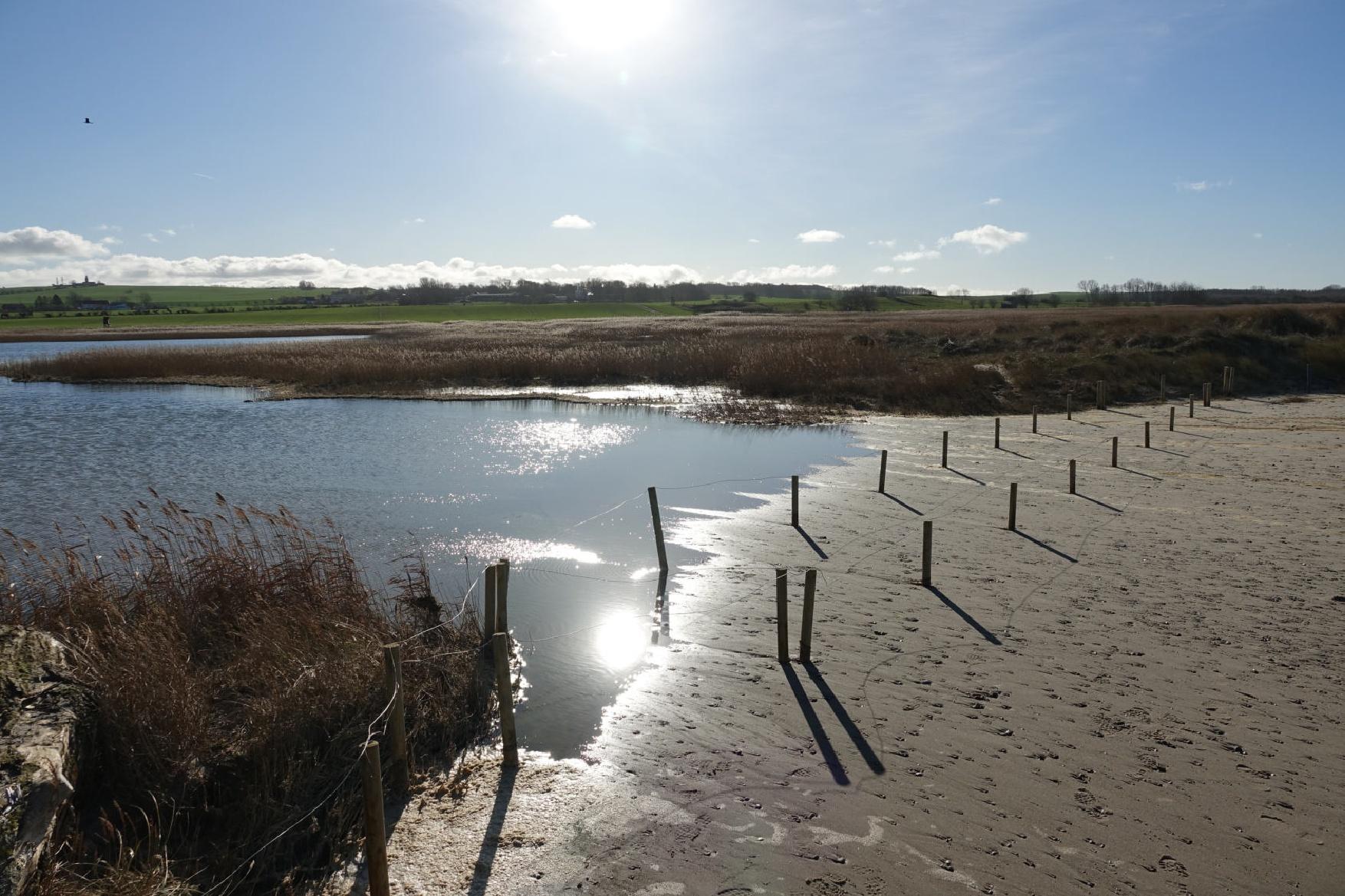 Hoher Wasserstand am Riedensee 05.02.2020