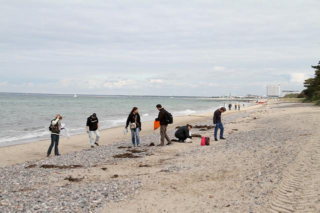 Wir kämmen den Strand ab und führen eine Strichliste.