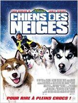 animaux film chien des neiges