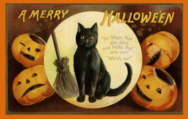 carte de voeux chat sorciere balai halloween