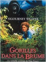 animaux film gorille dans la brume