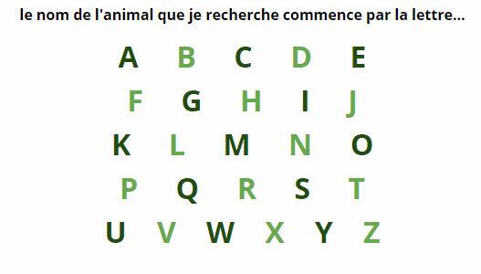 recherche liste animaux par lettre de l'alphabet ordre alphabetique animal  qui commence par