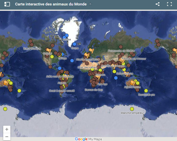 carte interactive animaux du monde map world