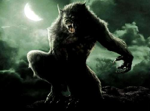 liste des animaux fantastiques et conte de fee animaux fabuleux etranges loup garou lycanthrope