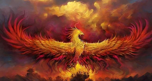animal fantastique liste des animaux fantastique phenix phoenix