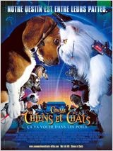 animaux film chiens et chats