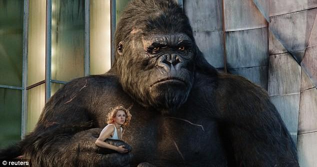 animaux célèbre king kong gorille
