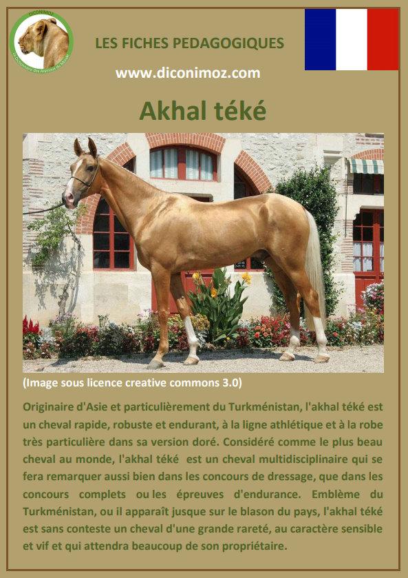 fiche chevaux cheval pdf pedagogique origine caractere comportement robe à letelcharger et a imprimer pour l'école ou la maison