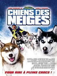 film chien des neiges chiens de traineaux