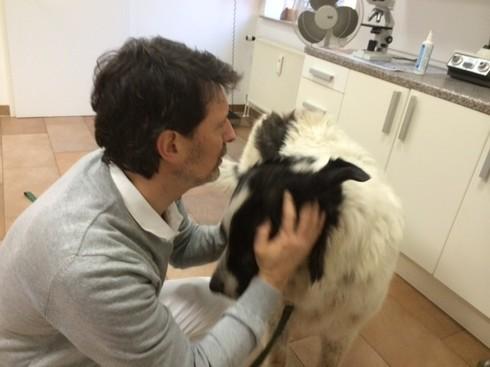 """""""Tschüs Hera!"""" meint der Doc und ich sage DANKE! Jetzt gehen wir erstmal spazieren und dann gibt es etwas Leckeres zum Fressen für Hera! Das Leben ist doch schön! Und nach einem Tal gehts immer wieder aufwärts, das gilt nicht nur für Hunde!"""