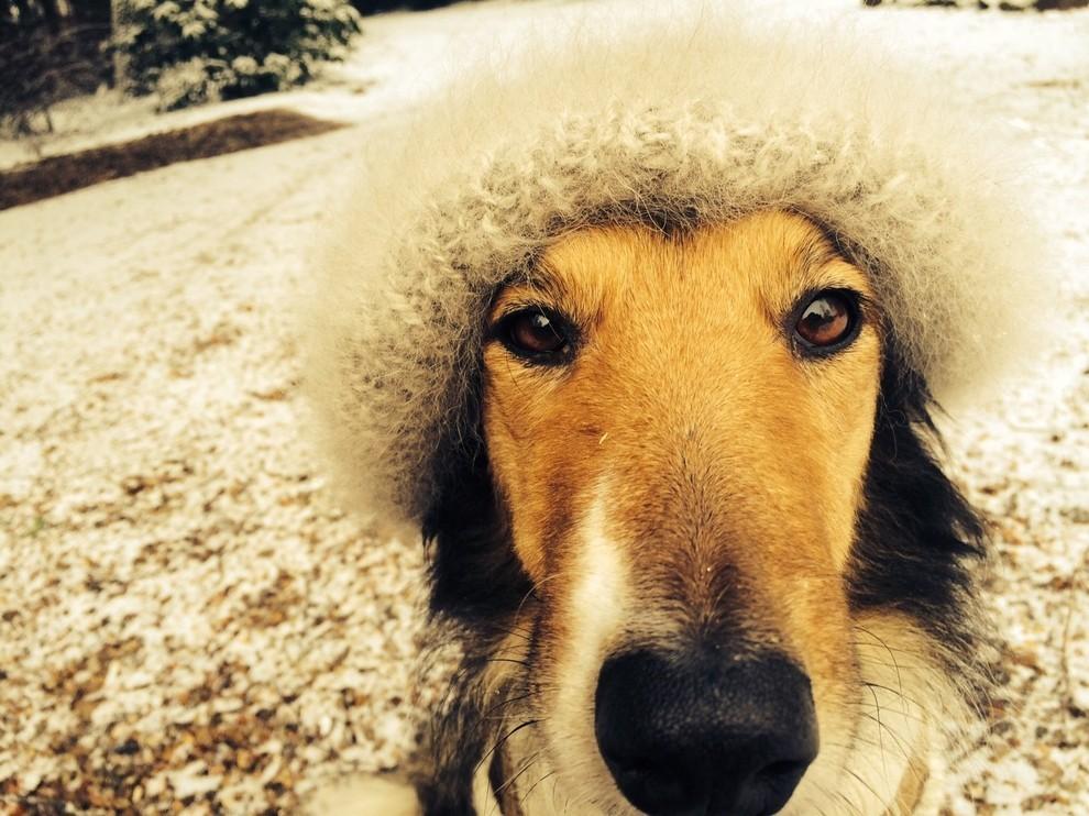 Mit der Mütze aus Heras Hundewolle, sieht sie umwerfend süß aus, aber praktisch ist das nun auch nicht gerade.