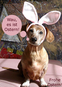 Quelle: http://www.free-ecards.internetcityservice.com