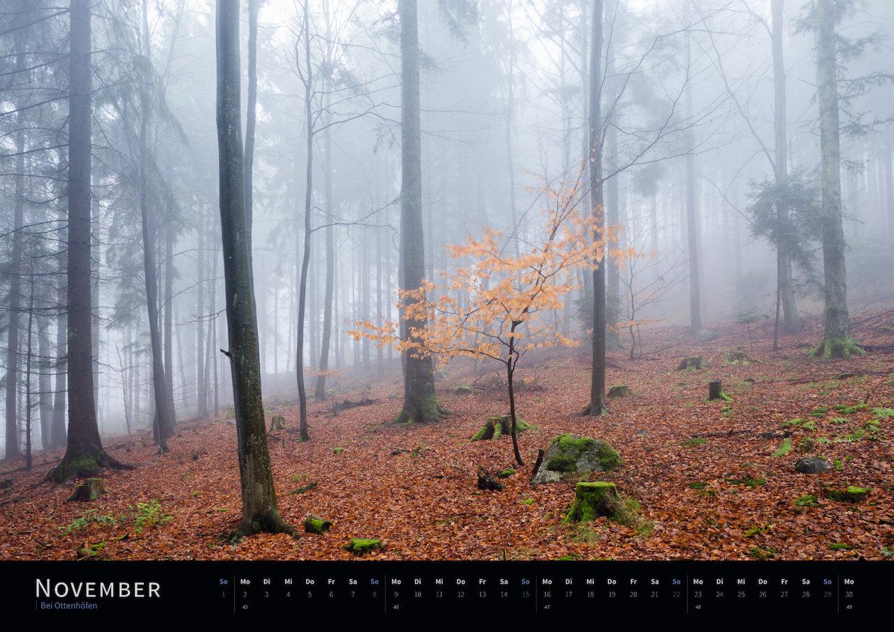 Schwarzwald-Kalender 2020 November