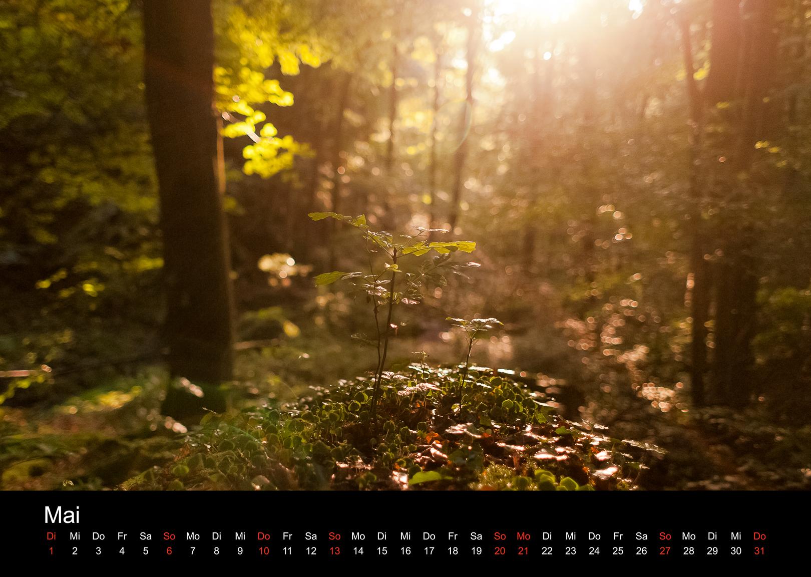 Schwarzwald-Kalender 2018 Mai