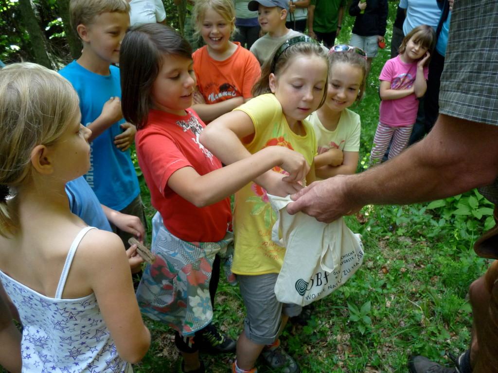 Kinderwaldrätsel