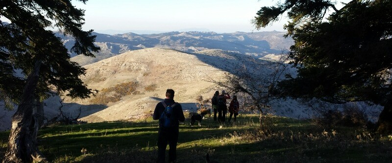 Hiking trip to mount Torrecilla, the highest peak of the Sierra de las Nieves
