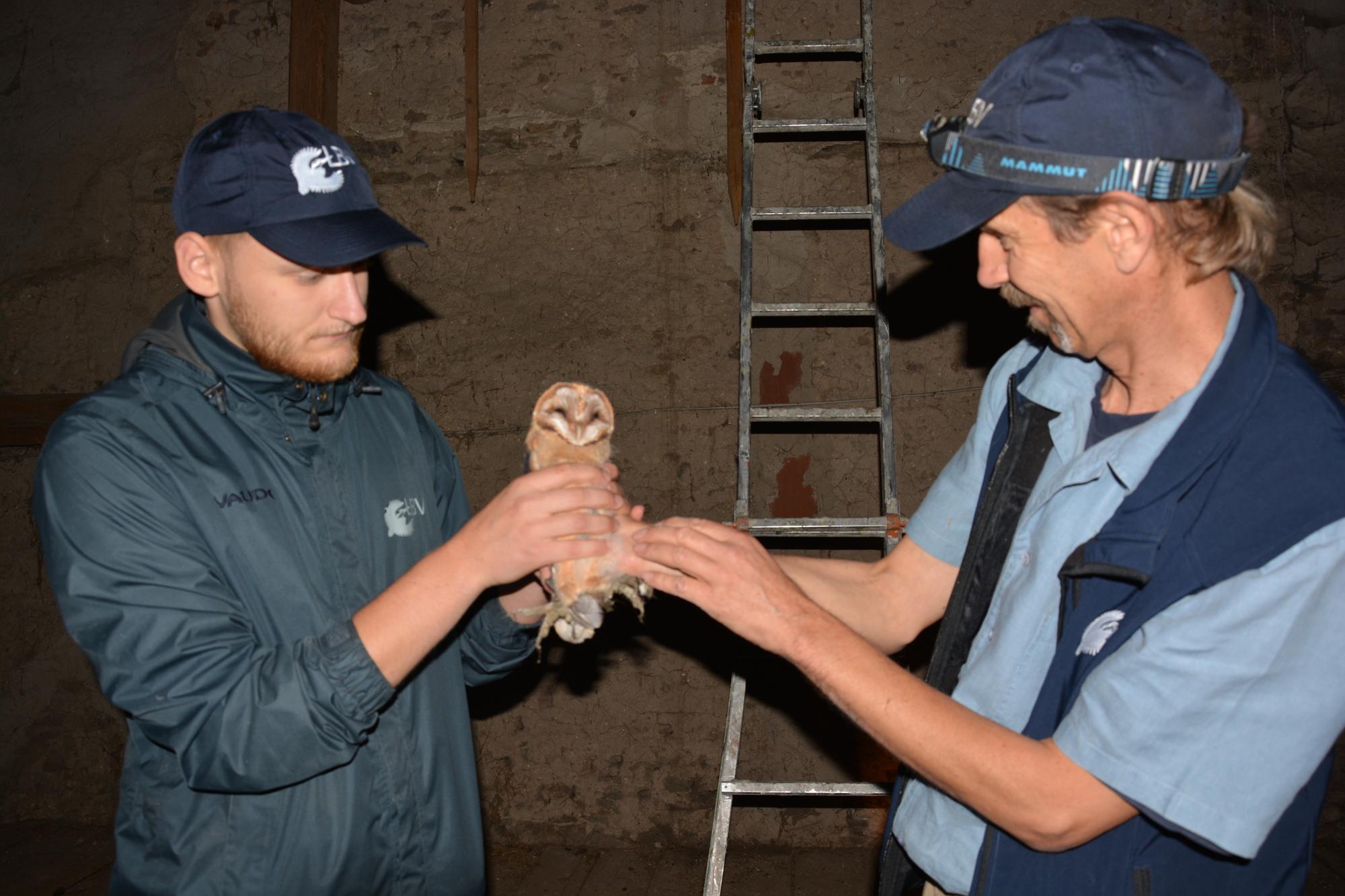 Kommen Sie den Tieren ganz nah. Z.B bei der Pflege von gefundenen oder verletzen Tieren oder der Vogelberingung.