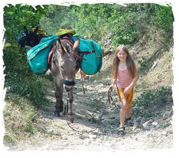 Een mooie wandeltocht maken met pony's of ezels.