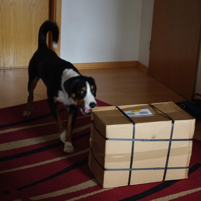 Mal wieder ein Paket für mich!!