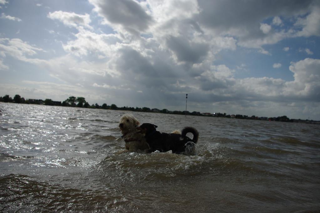 Auch bei dem Wetter geht es in Wasser