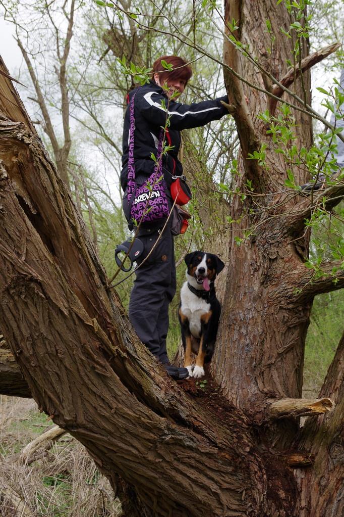 Ich bin mal mit in den Baum geklettert ;-)