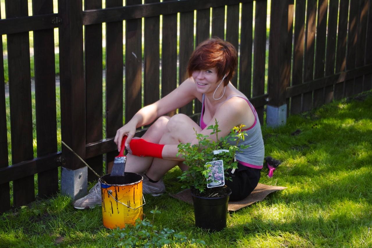 Tascha streicht den Zaun