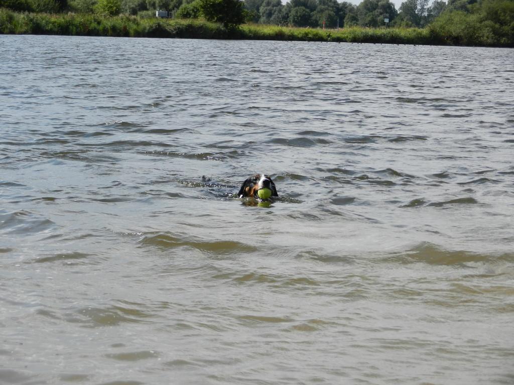Schwimmen bei dem Wetter ist toll