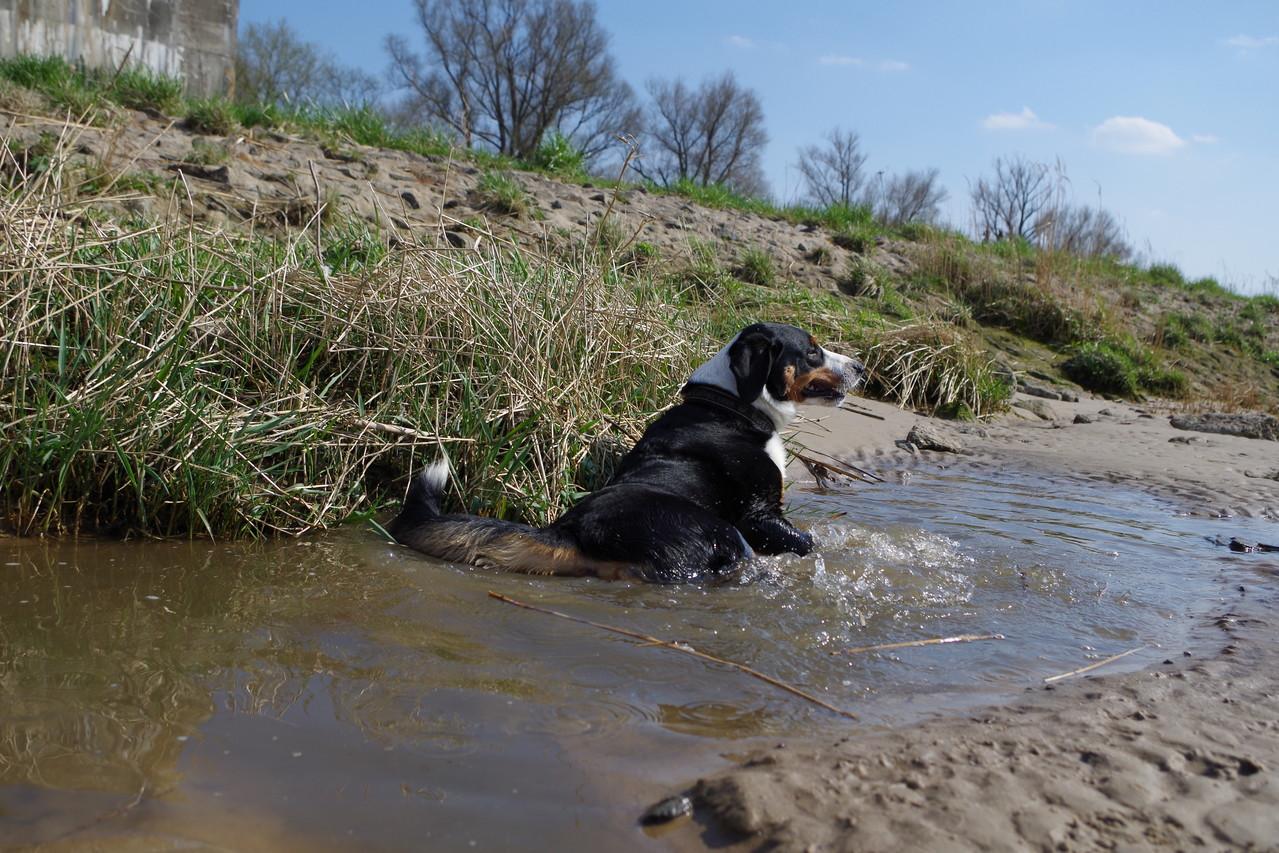 Pause im Wasser