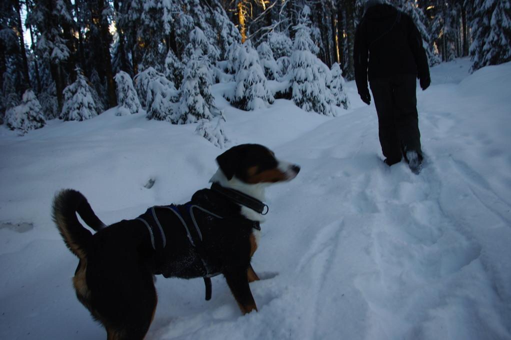 stellenweise war der schnee ganz schön tief