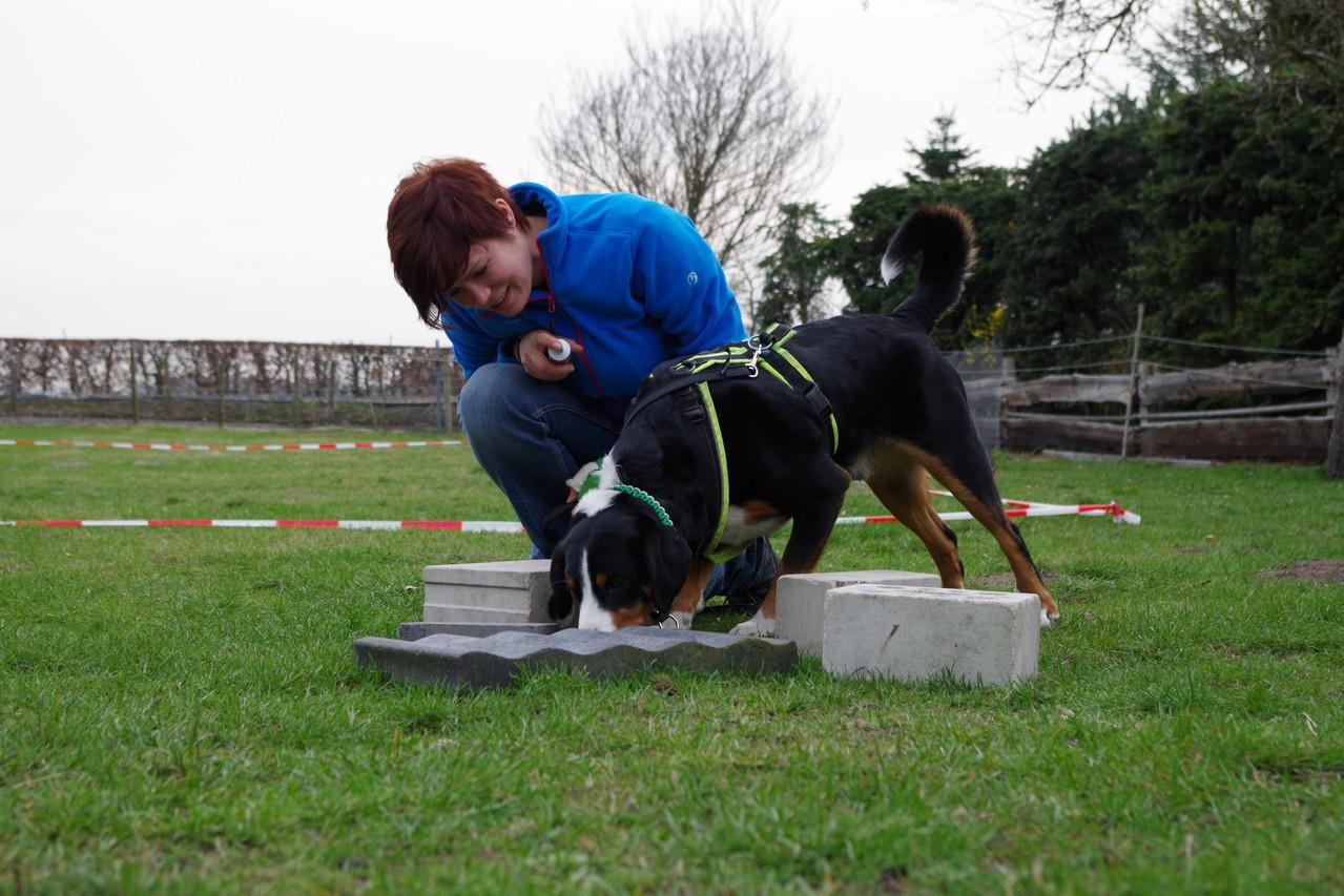 ZOS* Training bei Sabine Mühlbradt