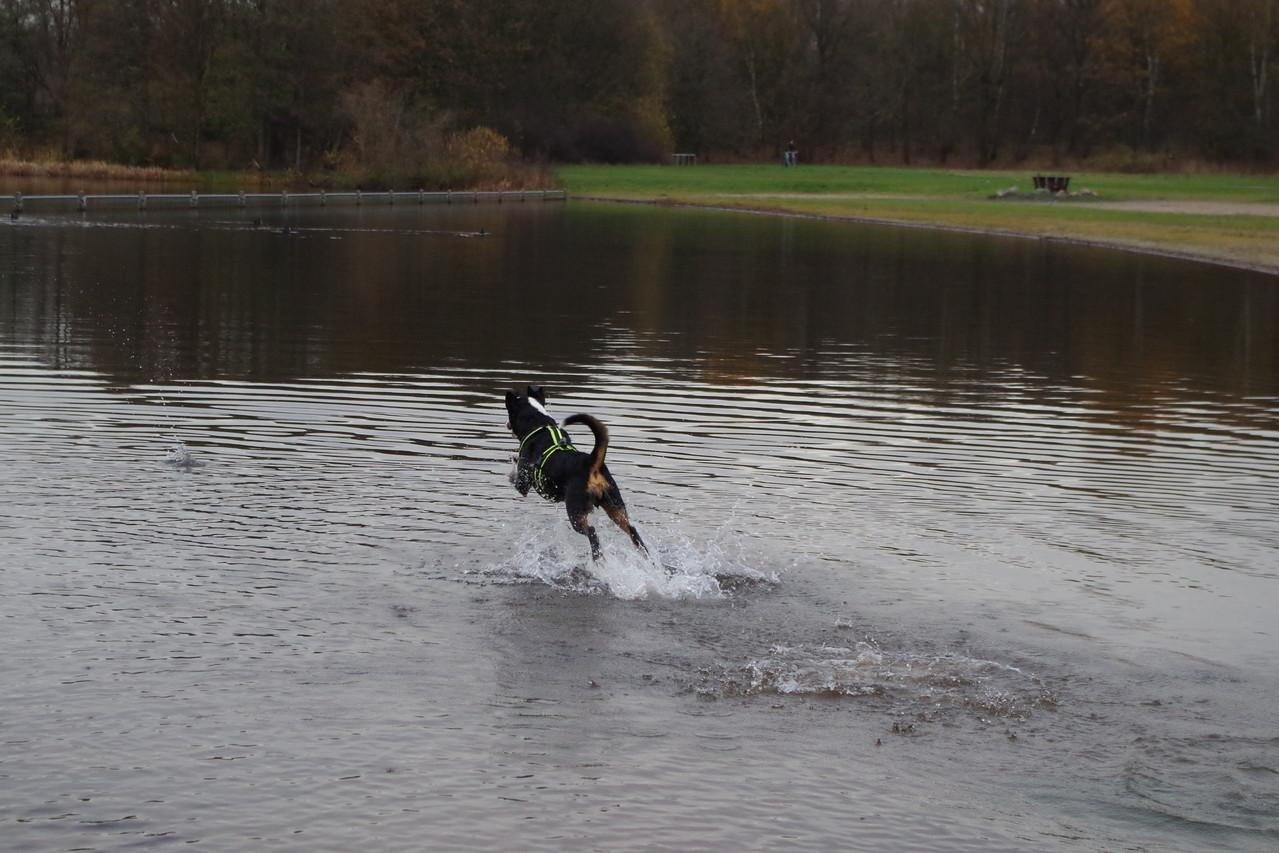 ich kann übers Wasser laufen ;-)