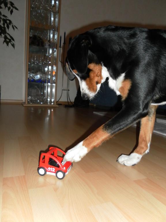 Ich kann auch das Auto schieben ;-)