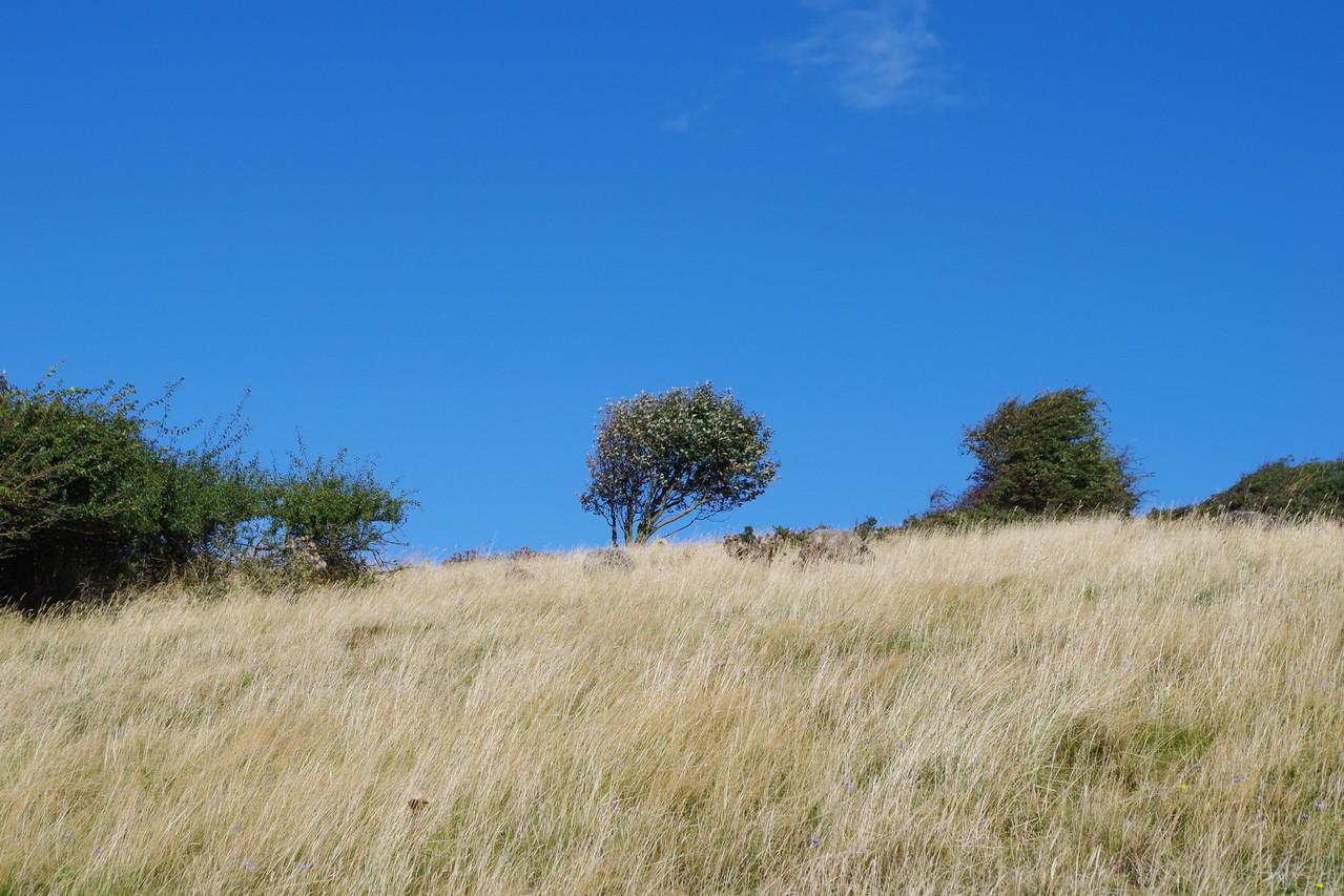 tolle Landschaft auf der Landzunge