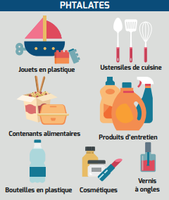 Famille des phtalates (source : institut national du cancer)