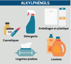Famille des alkylphénols (source : institut national du cancer)