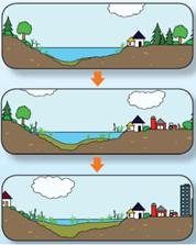 Croquis des différents stades trophiques du lac