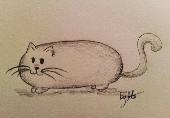 #100kittycats Nr.24