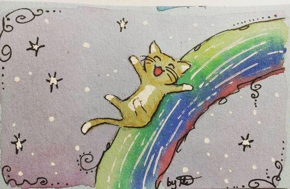 #100kittycats Nr.5