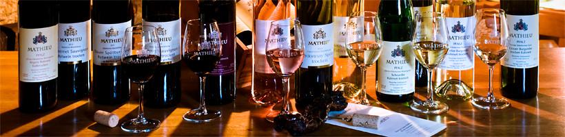 Erleben Sie eine Weinprobe im Weingut Mathieu an der Südlichen Weinstraße.
