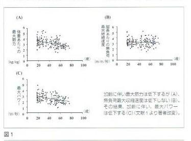 加齢に伴い最大筋力は低下しますが、無負荷最大収縮力は低下しません。