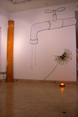 Install view, Cranbrook Art Museum, mixed media and drawing, 2004