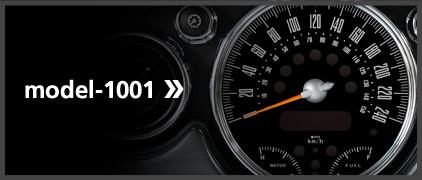 model-1001